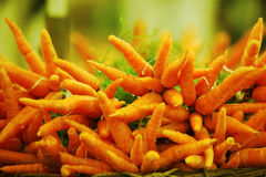 Fresh Carrots. Fresh orange carrots drenched in rain water for sale at a farm Stock Photography
