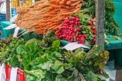 Fresh carrots, parsley and different types of lettuce are sold at the farmer`s market on an autumn day in blue plastic boxes with. Other vegetables. Farmer`s stock images