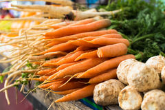 Fresh carrots and parsley Stock Images