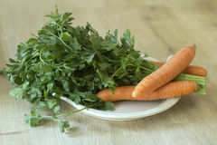 Fresh Carrots and Parsley Stock Image