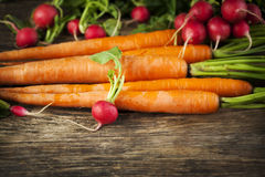 Fresh carrots and radish on wooden background. Royalty Free Stock Images