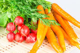 Fresh carrots and radishes Royalty Free Stock Photos