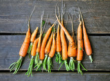 Fresh carrots with roots on a dark surface. Fresh carrots with roots on a dark brown wooden surface. Top view Stock Photo