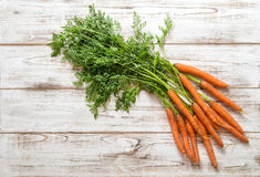 Fresh carrots roots with green leaves. Organic food Royalty Free Stock Image