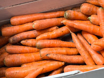 Fresh Carrots on Sale in Market Stock Image