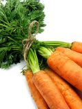 Fresh carrots tied together Stock Images
