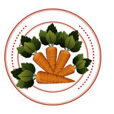 Fresh carrots vegetables Royalty Free Stock Photography