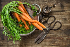Fresh carrots with vintage kitchen utensils on rustic wooden bac Royalty Free Stock Images