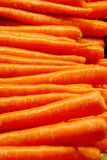 Fresh Carrots with Water Droplets. A row of fresh carrots, recently washed with glistening water droplets Royalty Free Stock Photo