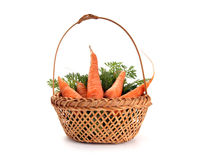 Fresh carrots on white Stock Images