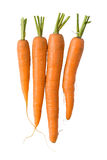 Fresh carrots on white Royalty Free Stock Image