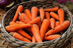 Fresh carrots in a wicker basket Stock Photography