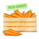 Fresh carrots in a wooden box on a white background. Vector Stock Image