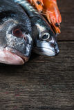 Fresh catch fish on wooden background Stock Photos