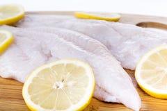 Fresh Catfish Fillets Royalty Free Stock Images