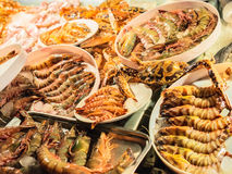 Fresh caught seafood, different types of shrimps Stock Photo
