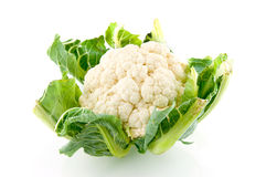 Fresh cauliflower. Isolated on white background stock image