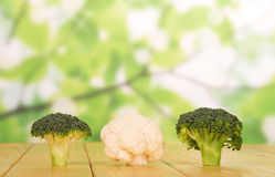 Fresh cauliflower and broccoli on abstract green. Fresh cauliflower and broccoli on abstract green background Royalty Free Stock Image