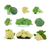 Fresh cauliflower and broccoli on a white background.  Stock Photo