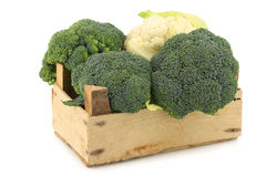 Fresh cauliflower and broccoli in a wooden crate Stock Images