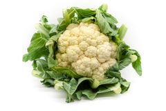 A fresh cauliflower from the field stock photos