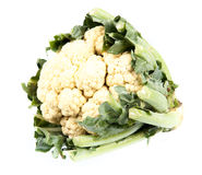 Fresh cauliflower isolated on white Royalty Free Stock Photography