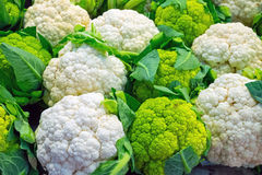 Fresh cauliflower for sale Stock Photography
