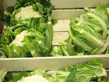 Fresh cauliflowers on the market stand Stock Photos
