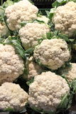 Fresh cauliflowers. For sale in a greengrocery Stock Photography