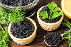Fresh caviar for snacks and alcohol. Russian appetizer. Royalty Free Stock Images