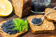 Fresh caviar for snacks and alcohol. Russian appetizer. Royalty Free Stock Image