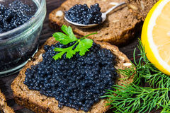 Fresh caviar for snacks and alcohol. Russian appetizer. Royalty Free Stock Photos