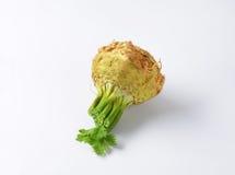 Fresh celeriac Stock Photo