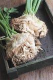 Fresh celeriac Royalty Free Stock Image