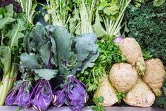 Fresh Celeriac. And other vegetables, including celery and turnips, for sale in fruit and vegetable shop Stock Photos