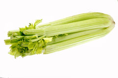 Fresh celery Stock Image