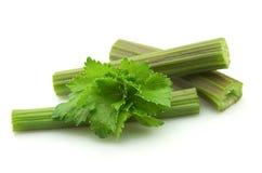 Fresh celery Royalty Free Stock Photos