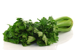 Fresh celery Stock Photo