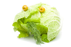 Free Fresh Celery Cabbage Royalty Free Stock Images - 5600149