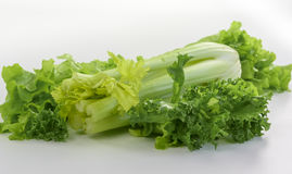 Fresh celery with lettuce Royalty Free Stock Photos