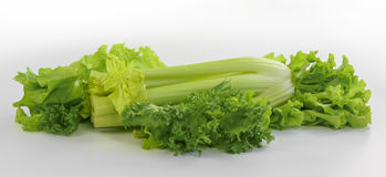 Fresh celery with lettuce Royalty Free Stock Images