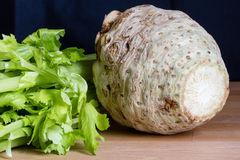 Fresh celery root Stock Images