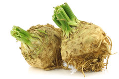 Fresh celery roots with some foliage Royalty Free Stock Photo