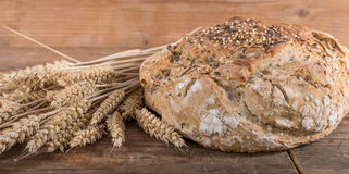 Fresh cereal bread with ears of wheat Stock Image
