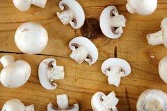 Fresh champignon mushroom Stock Photography