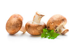 Fresh champignon mushrooms Royalty Free Stock Photos