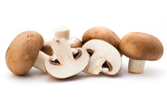 Fresh champignon mushrooms isolated on white. Stock Images