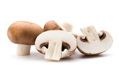 Fresh champignon mushrooms isolated on white Stock Photography