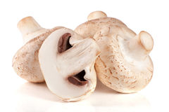 Fresh champignon mushrooms isolated on white background.  Royalty Free Stock Photos