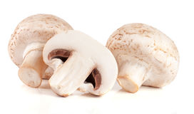 Fresh champignon mushrooms isolated on white background.  Royalty Free Stock Images